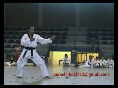 One of the best Martial Arts Fighters / Exhibition